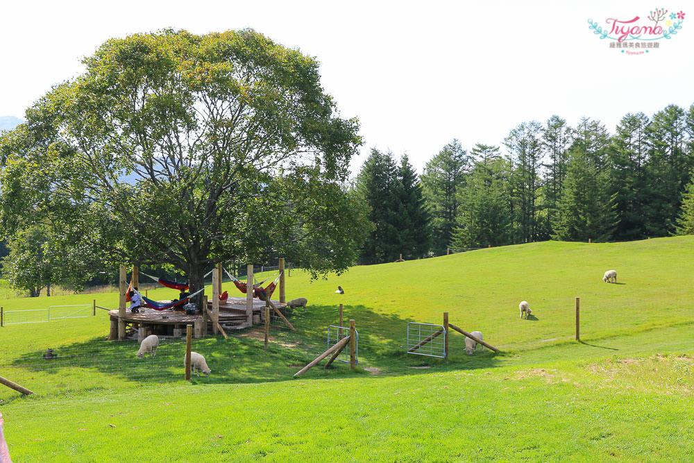 北海道星野Tomamu渡假村.牧場Farm:免費景點牧場草床.午睡吊床.餵羊&騎馬體驗.自行車 @緹雅瑪 美食旅遊趣