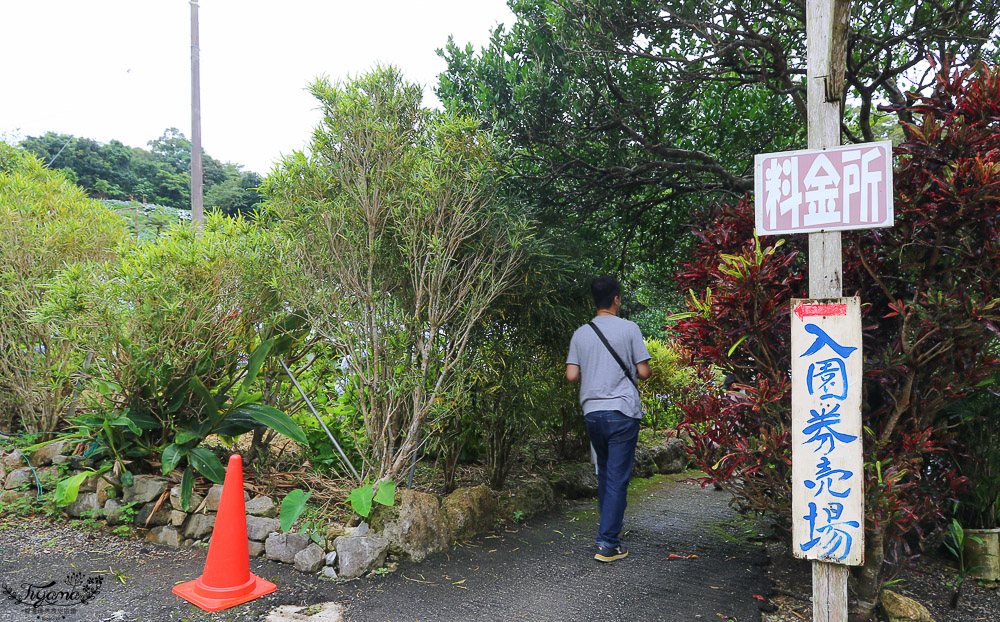 沖繩繡球花&沖繩賞花》饒平名繡球花園 よへなあじさい園 @緹雅瑪 美食旅遊趣