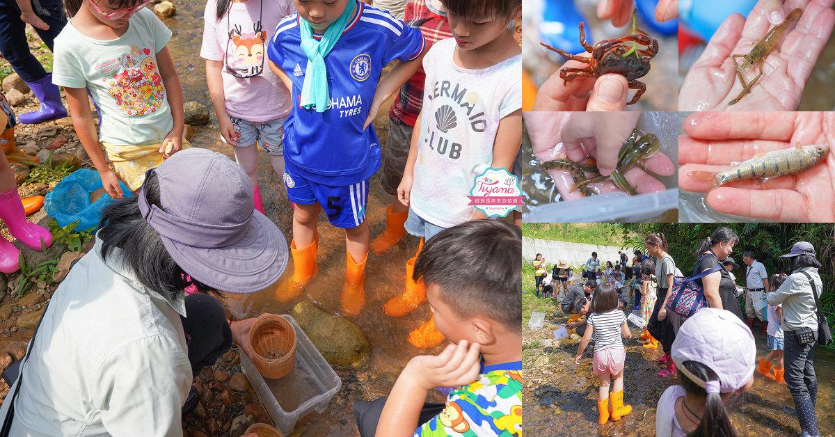 南投埔里親子體驗活動》桃米魚蝦生態探索,親子同樂「幼幼版溯溪」好好玩!! @緹雅瑪 美食旅遊趣
