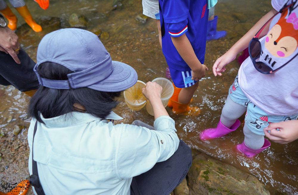 南投埔里親子體驗活動》桃米魚蝦生態探索,親子同樂溯溪生態觀察,知性之旅好好玩!! @緹雅瑪 美食旅遊趣