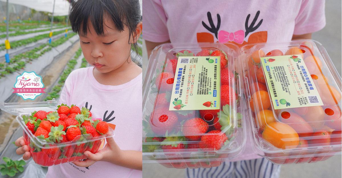 台南草莓園:台南開心有機農場,有機草莓、有機蕃茄11月搶先開採囉!! @緹雅瑪 美食旅遊趣
