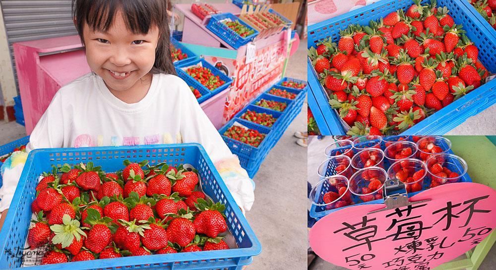 苗栗大湖景點》草莓文化館.大湖酒莊,超好拍~巨大草莓出沒!!採草莓、吃草莓香腸.草莓冰、買草莓伴手禮 @緹雅瑪 美食旅遊趣
