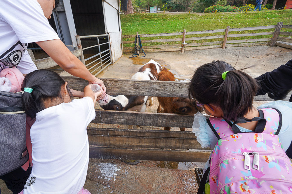 苗栗農場.苗栗景點》飛牛牧場 親子旅遊聖地,擠牛奶、餵小牛、小鴨、小羊~ @緹雅瑪 美食旅遊趣