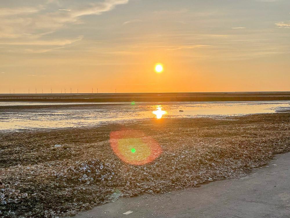 彰化挖蛤蜊|免費挖蛤蜊景點《漢寶濕地》,鏡面沙灘、親子挖蛤蜊、生態觀察 @緹雅瑪 美食旅遊趣