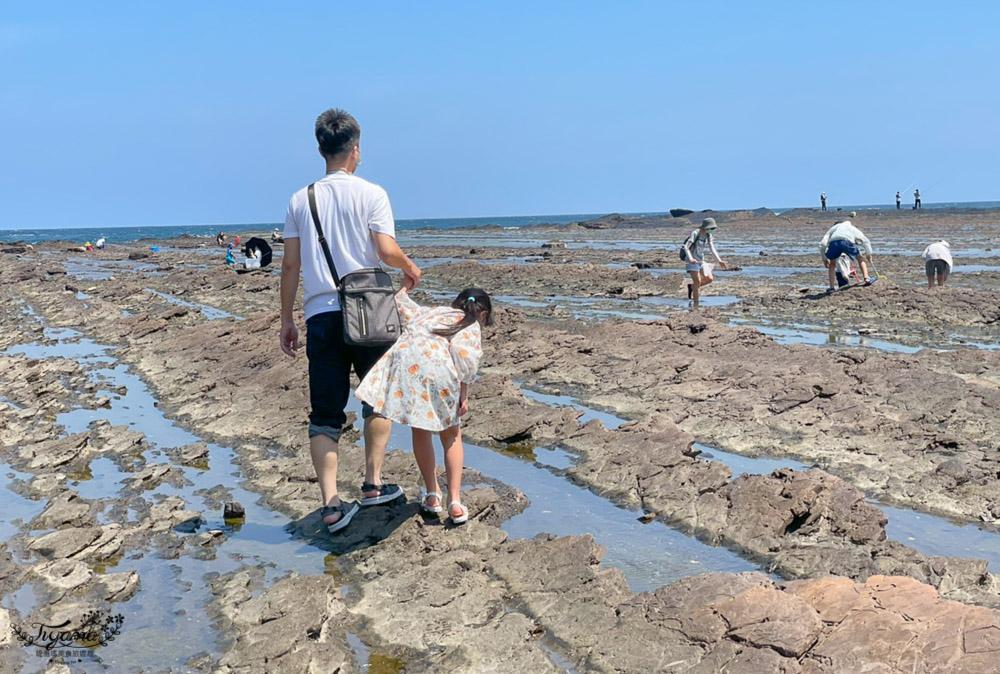東北角海岸抓魚蟹景點|馬崗潮間帶:親子免費景點,天然翠綠地毯,充滿魅力的潮間帶生態! @緹雅瑪 美食旅遊趣