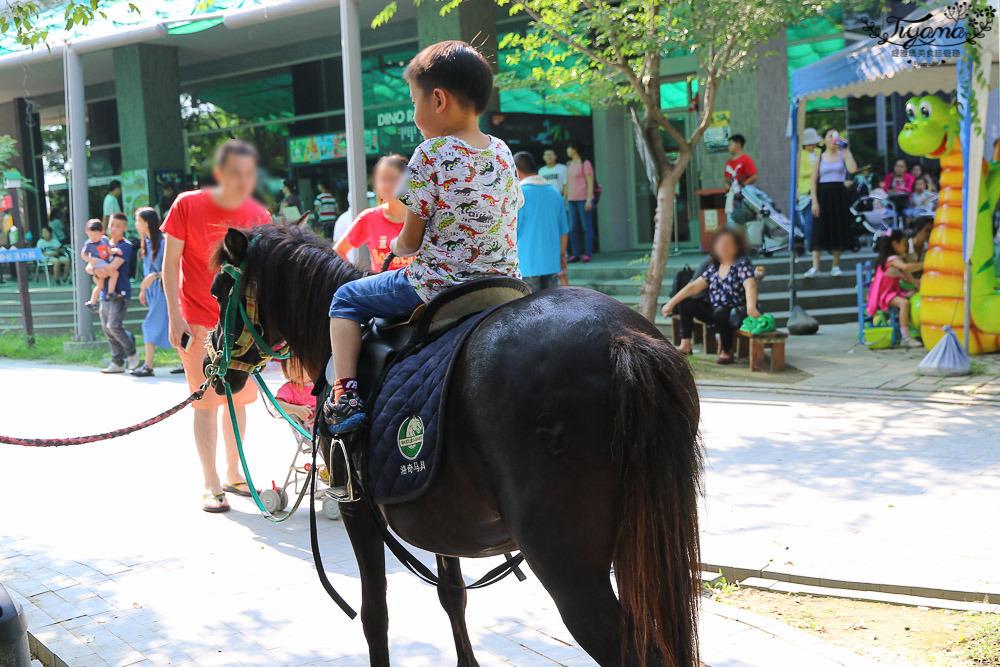 台南親子景點,樹谷農場好好玩!!雲端歷險繩索挑戰小朋友的勇氣與體力 @緹雅瑪 美食旅遊趣