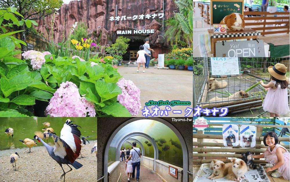 沖繩景點|名護自然動植物公園:親子必遊~和水豚君.小動物近距離互動 @緹雅瑪 美食旅遊趣