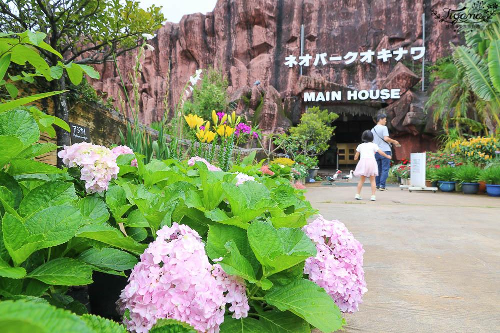 沖繩租車自駕超Easy~Times Car Rental、日本自駕:駕照申辦、安心險、加油Q&A @緹雅瑪 美食旅遊趣