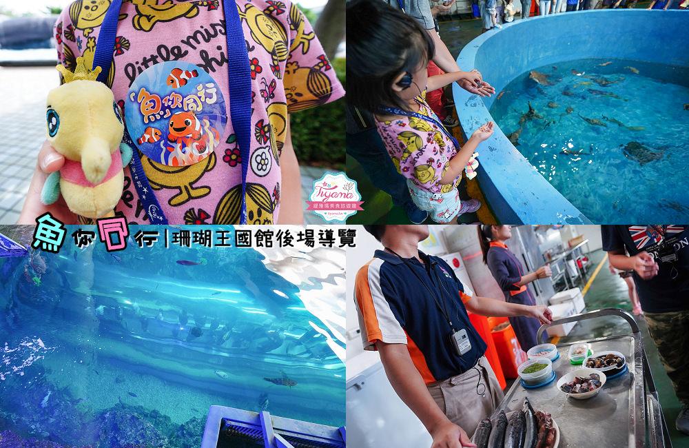屏東海生館》魚我同行|秘密花園後場體驗:珊瑚王國館後台導覽+餵食體驗 @緹雅瑪 美食旅遊趣