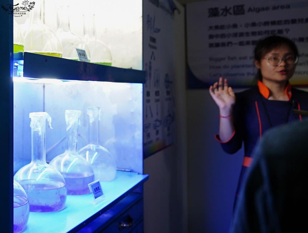 屏東海生館》魚我同行 秘密花園後場體驗:珊瑚王國館後台導覽+餵食體驗 @緹雅瑪 美食旅遊趣
