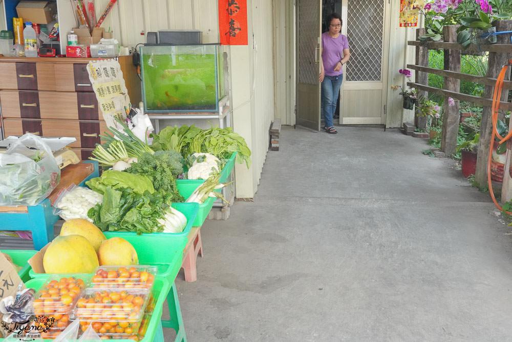 台南超隱密美食!柳營隱藏版鮮奶肉包「玉梅鮮乳包子饅頭」 @緹雅瑪 美食旅遊趣