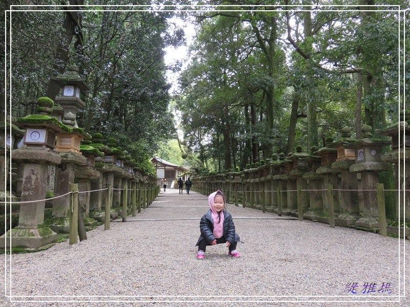 【奈良美食】吟松蕎麥麵~不經意尋到的奈良美食.斑鳩一日券 @緹雅瑪 美食旅遊趣