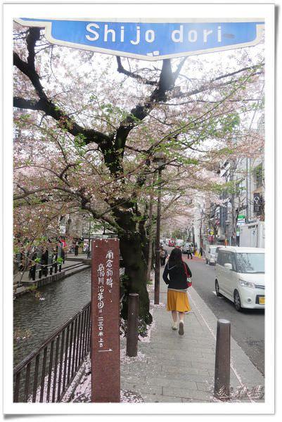 【京都景點】京都祇園.高瀨川賞櫻.吹雪~觀賞整個鴨川景色的星巴克 @緹雅瑪 美食旅遊趣