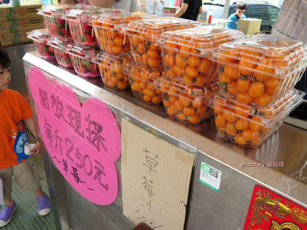 【高雄.阿蓮區】三本鮮莓園,安全蔬果認証草莓園 @緹雅瑪 美食旅遊趣