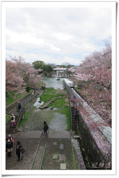 【京都景點】蹴上傾斜鐵道.岡崎疏水賞櫻 @緹雅瑪 美食旅遊趣