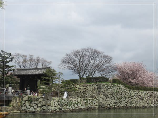 【神戶景點】姬路城.姬路市立動物園賞櫻.姬路旅遊券 @緹雅瑪 美食旅遊趣