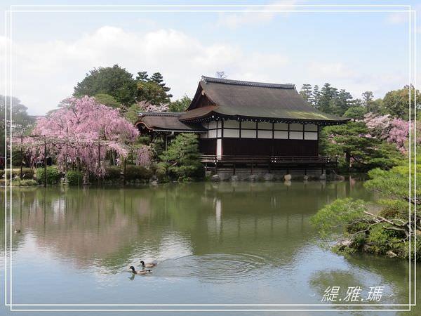 【京都景點】平安神宮賞櫻.平安神宮神苑泰平閣 @緹雅瑪 美食旅遊趣
